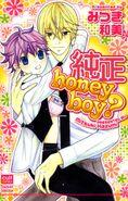 純正 honeyboy?